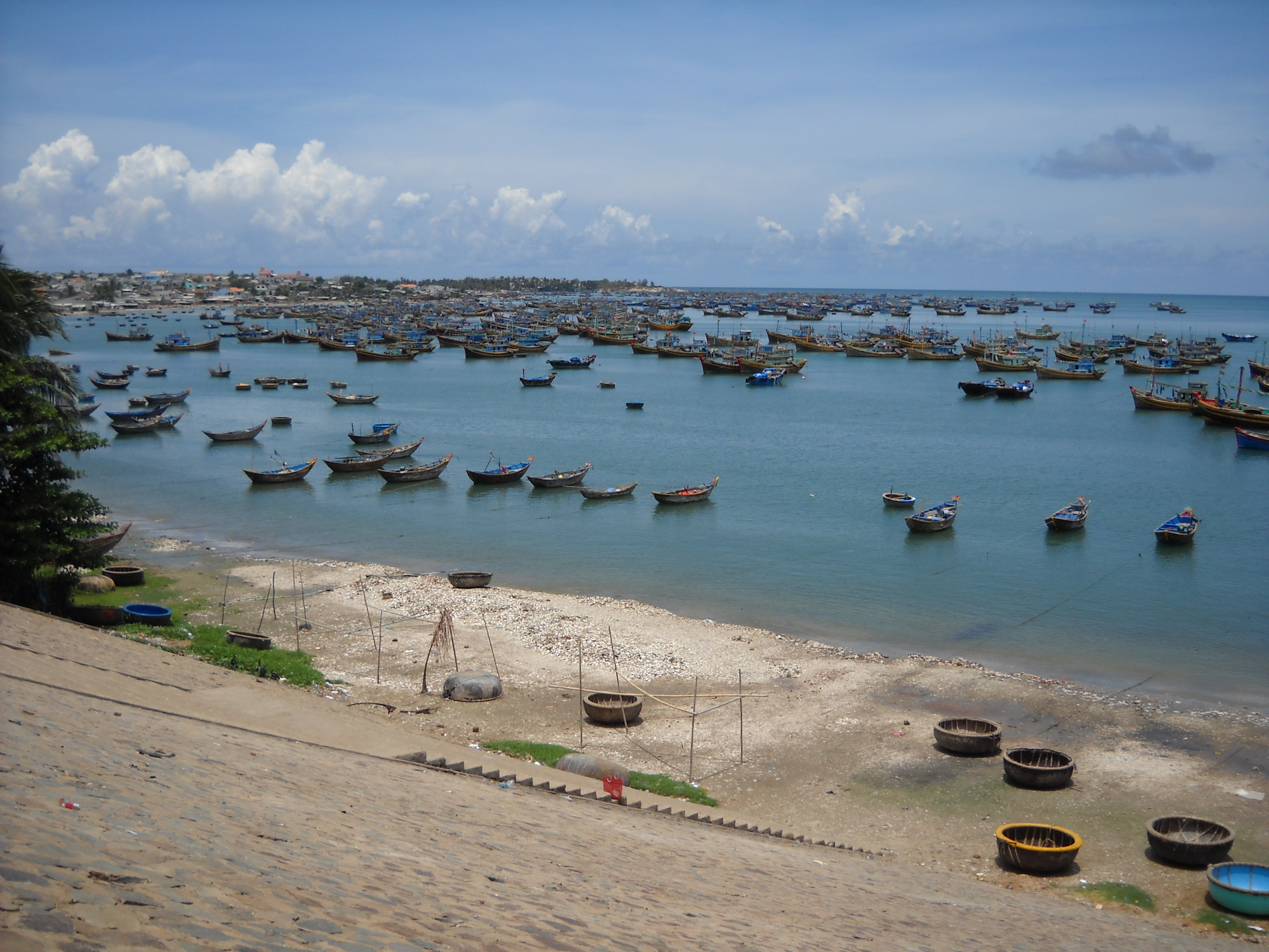 Bán nhớt Motul chính hãng tại Bình Thuận