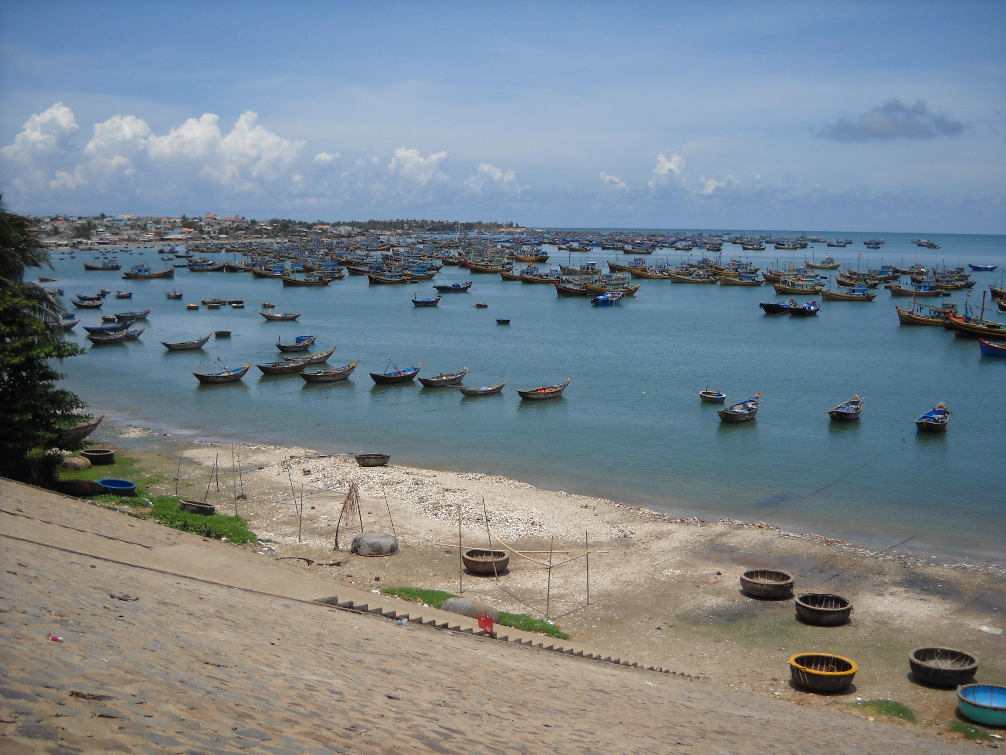 Bán nhớt Shell Advance chính hãng tại Bình Thuận