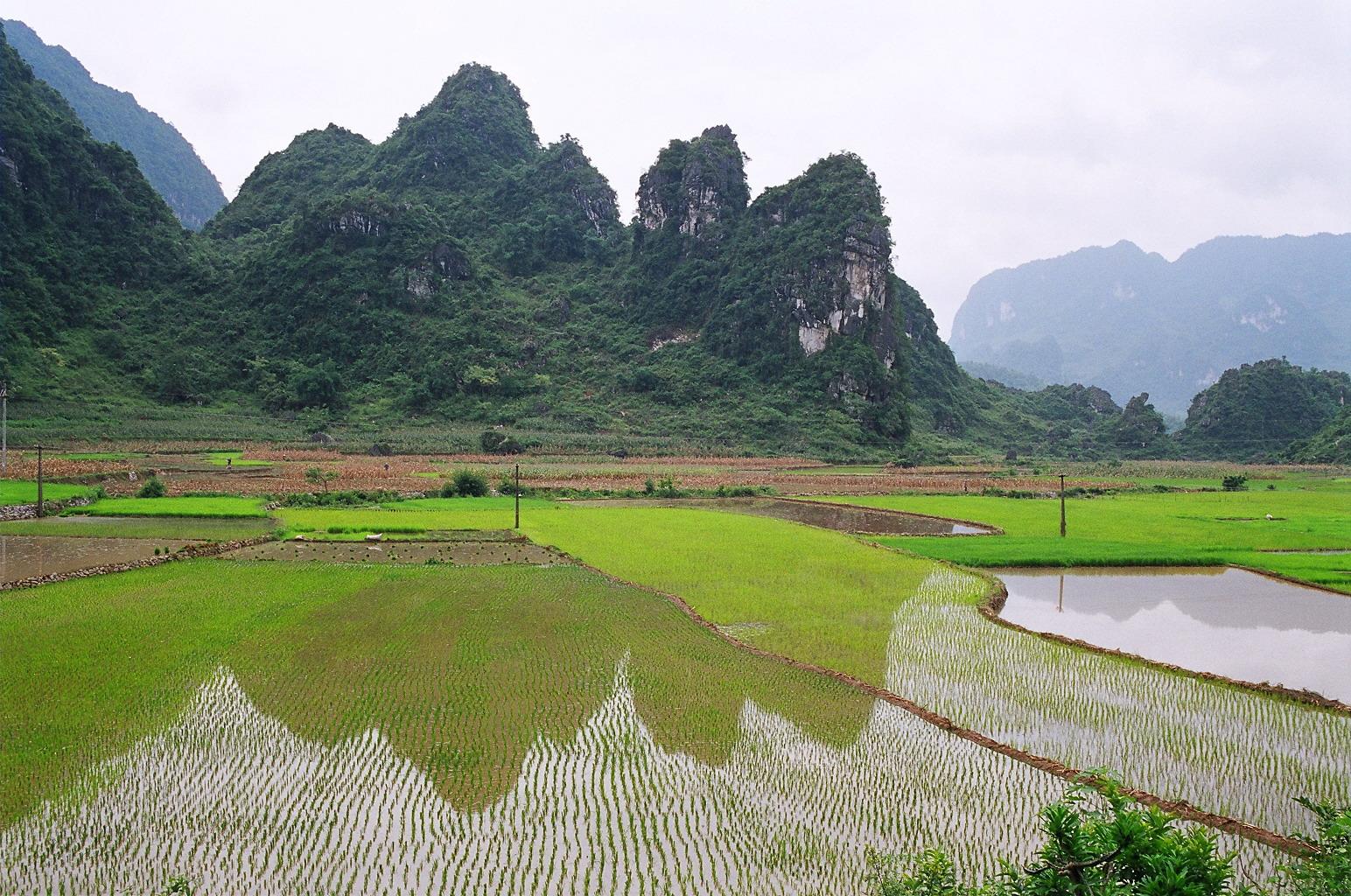 Bán nhớt Liqui Moly chính hãng tại Cao Bằng